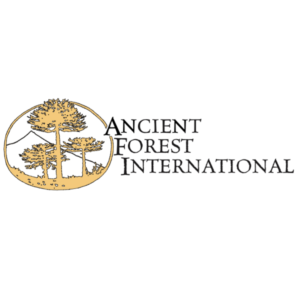 Ancient Forest International