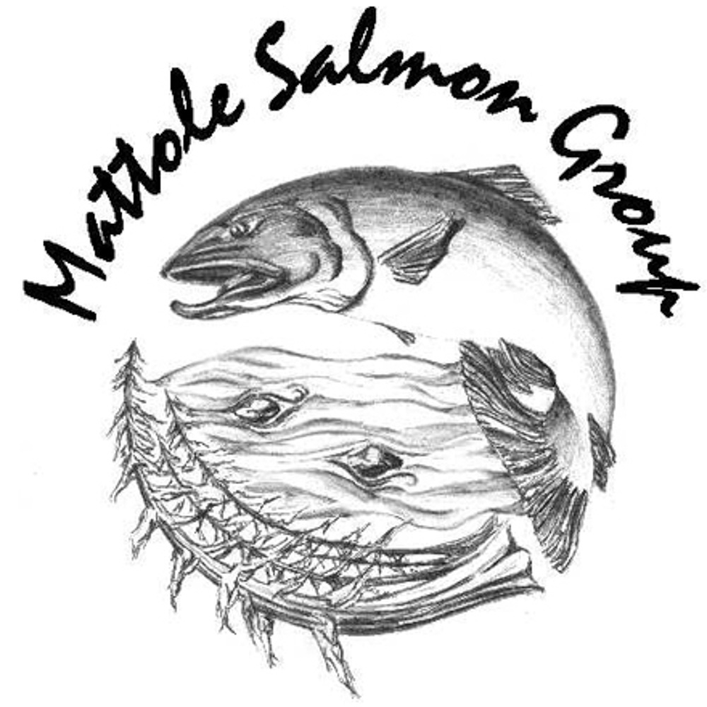 Mattole Salmon Group