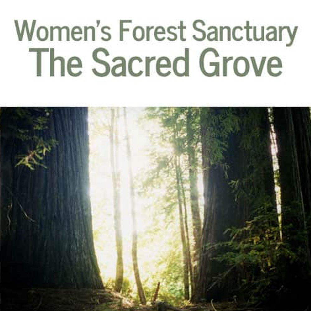Women's Forest Sanctuary