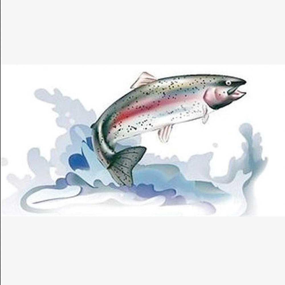 Save California Salmon