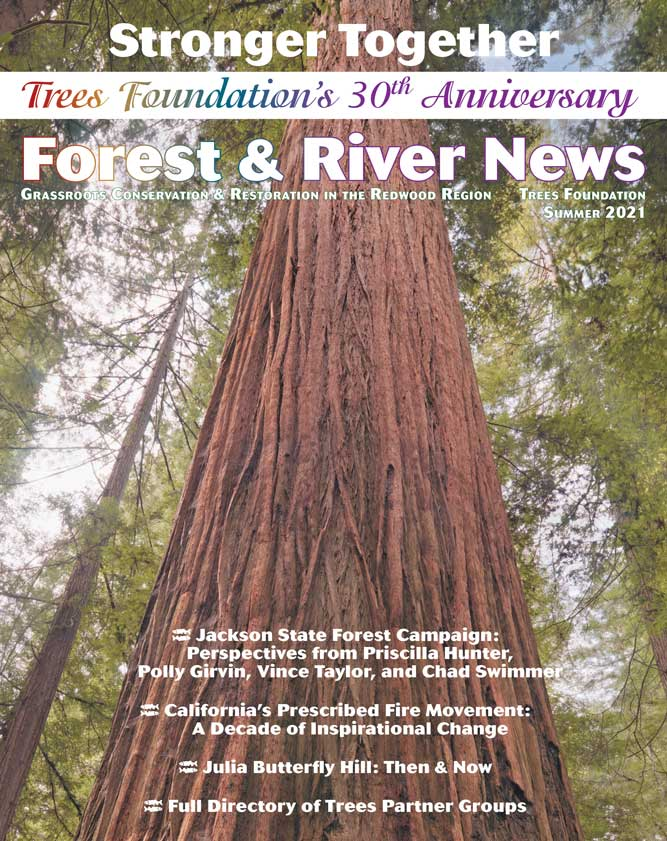 FRN_2021_Summer_071221_cover