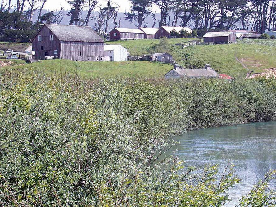 The Garcia River after restoration.