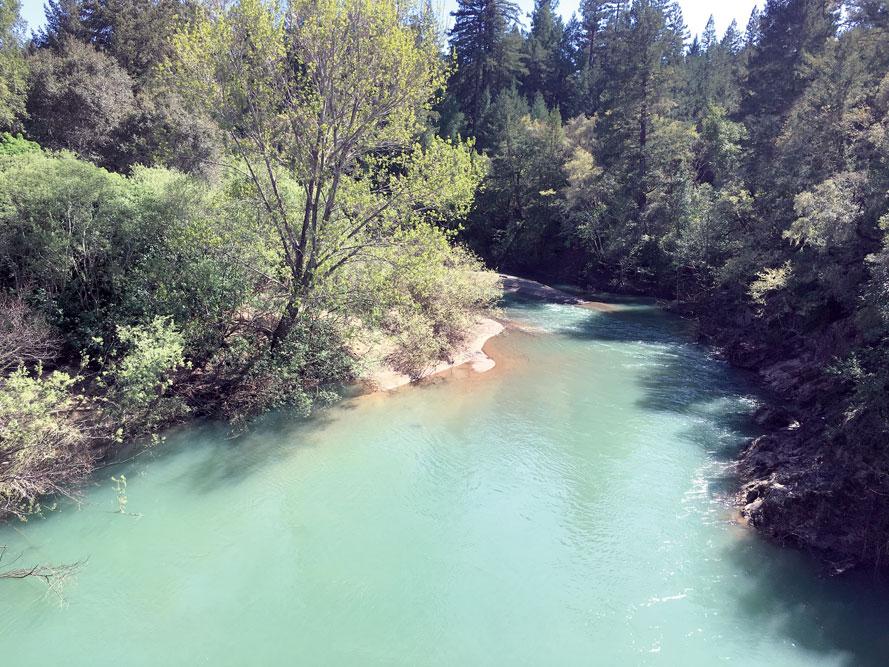 The Navarro River